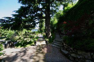 3 mature garden