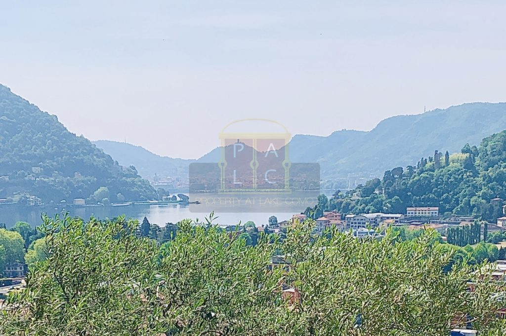 Luxury Villa Cernobbio (Copia)